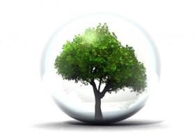environnement / écologie