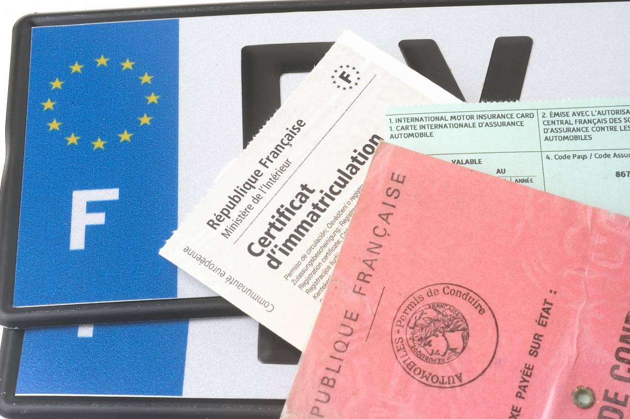 Le certificat d'immatriculation reçu après avoir fait la demande en ligne via un professionnel agréé